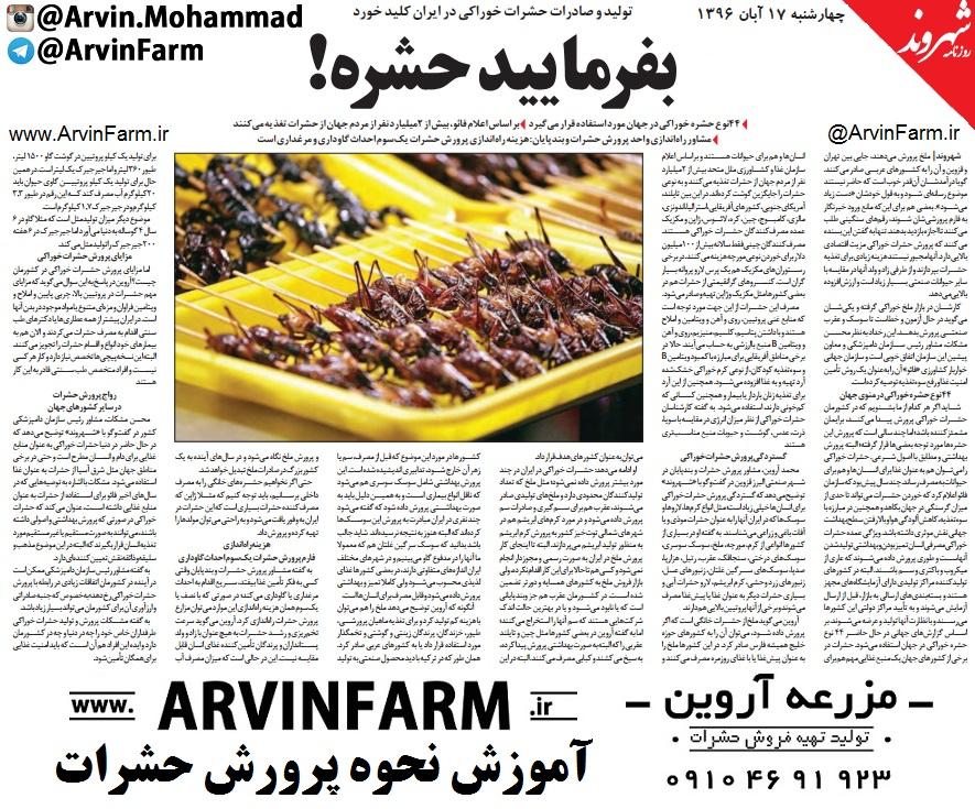 مصاحبه روزنامه شهروند با مهندس آروین | پرورش ملخ | مزرعه ملخ | پرورش ملخ صنعتی | سالن تولید ملخ خوراکی